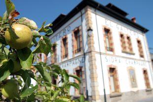 Sidra Tour Asturias