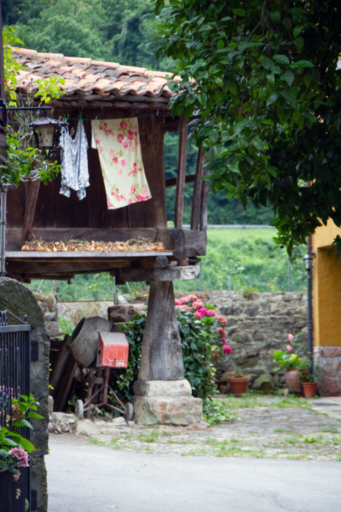 Drying Corn Asturias Old Farming House