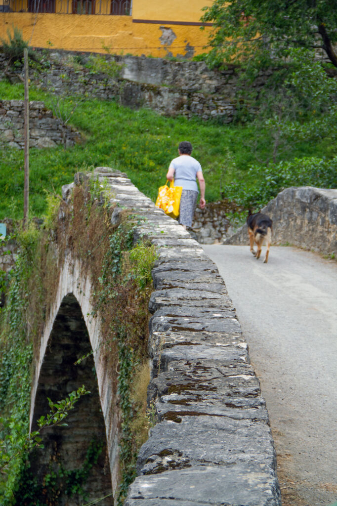 Shepard Dog Asturias Stone Bridge Woman