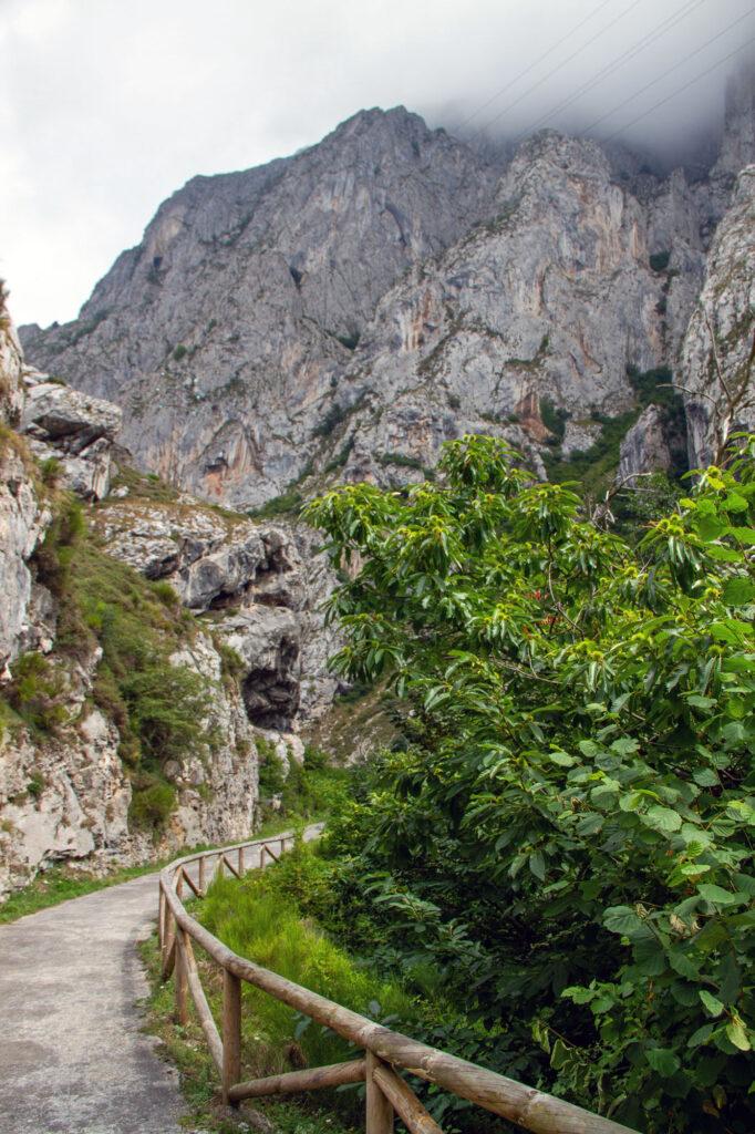Hiking Path License Photos Asturias