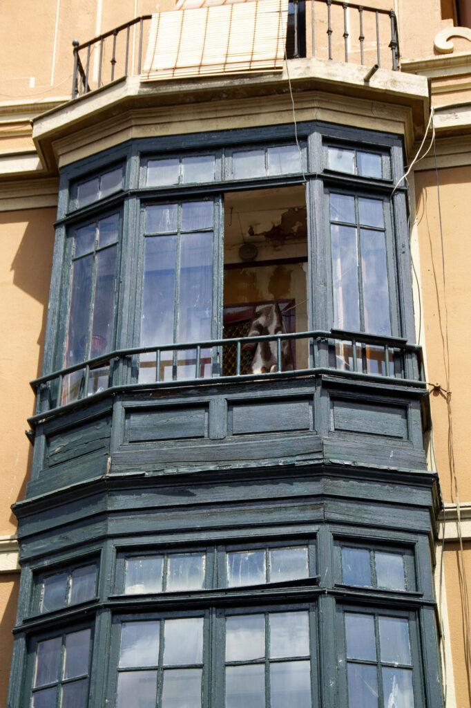 Gijon Old Houses Asturias