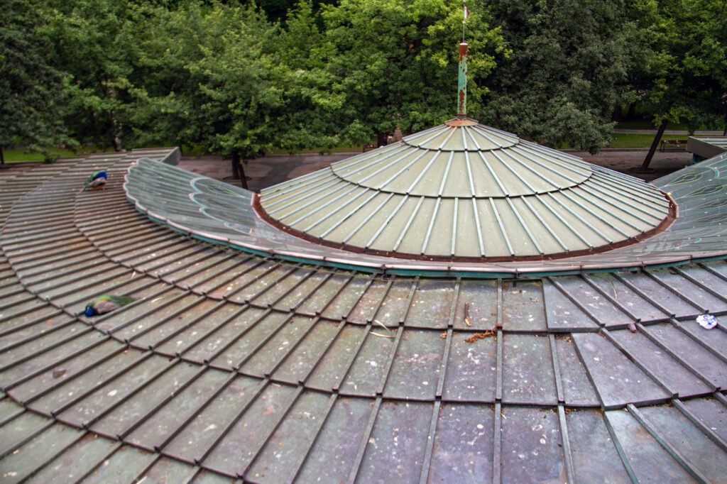 Peacock House Roof