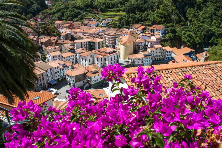 Read more about the article Day Trip to Cudillero