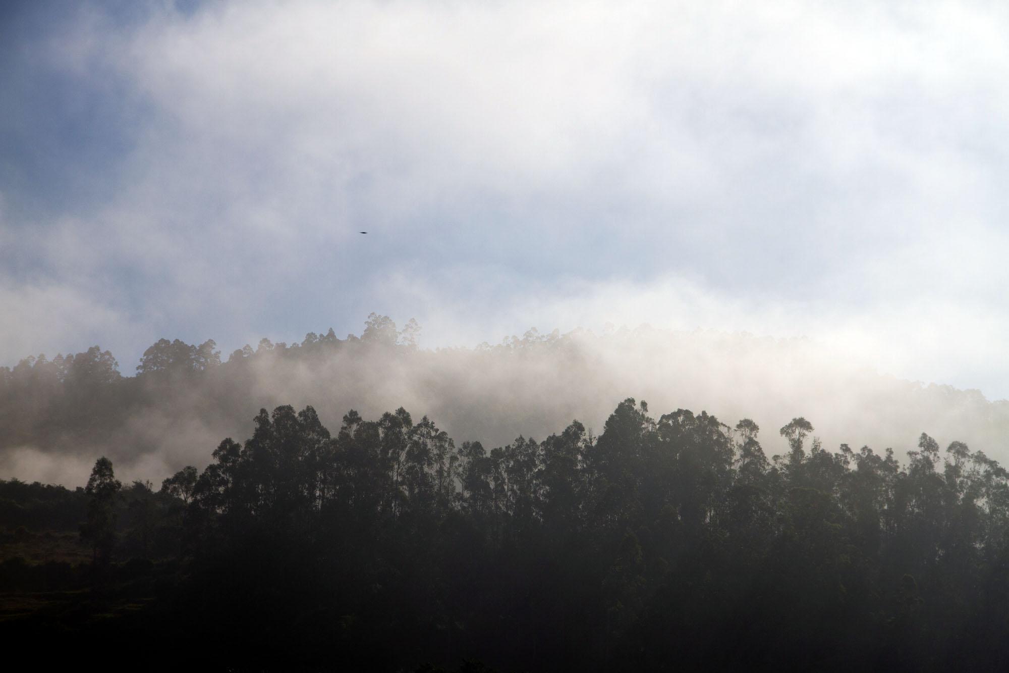 Mist over Asturias