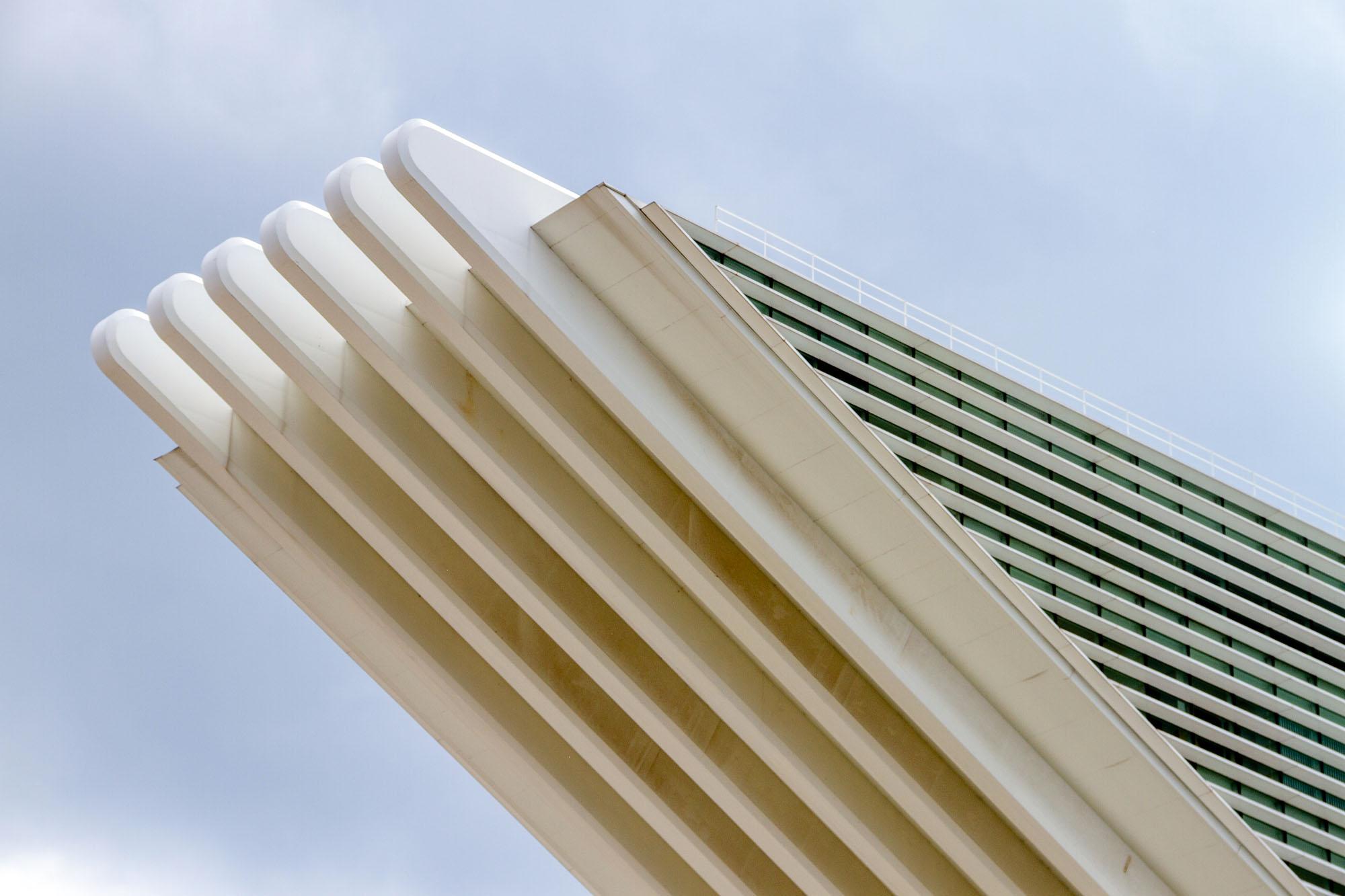 Architecture Shapes Calatrava