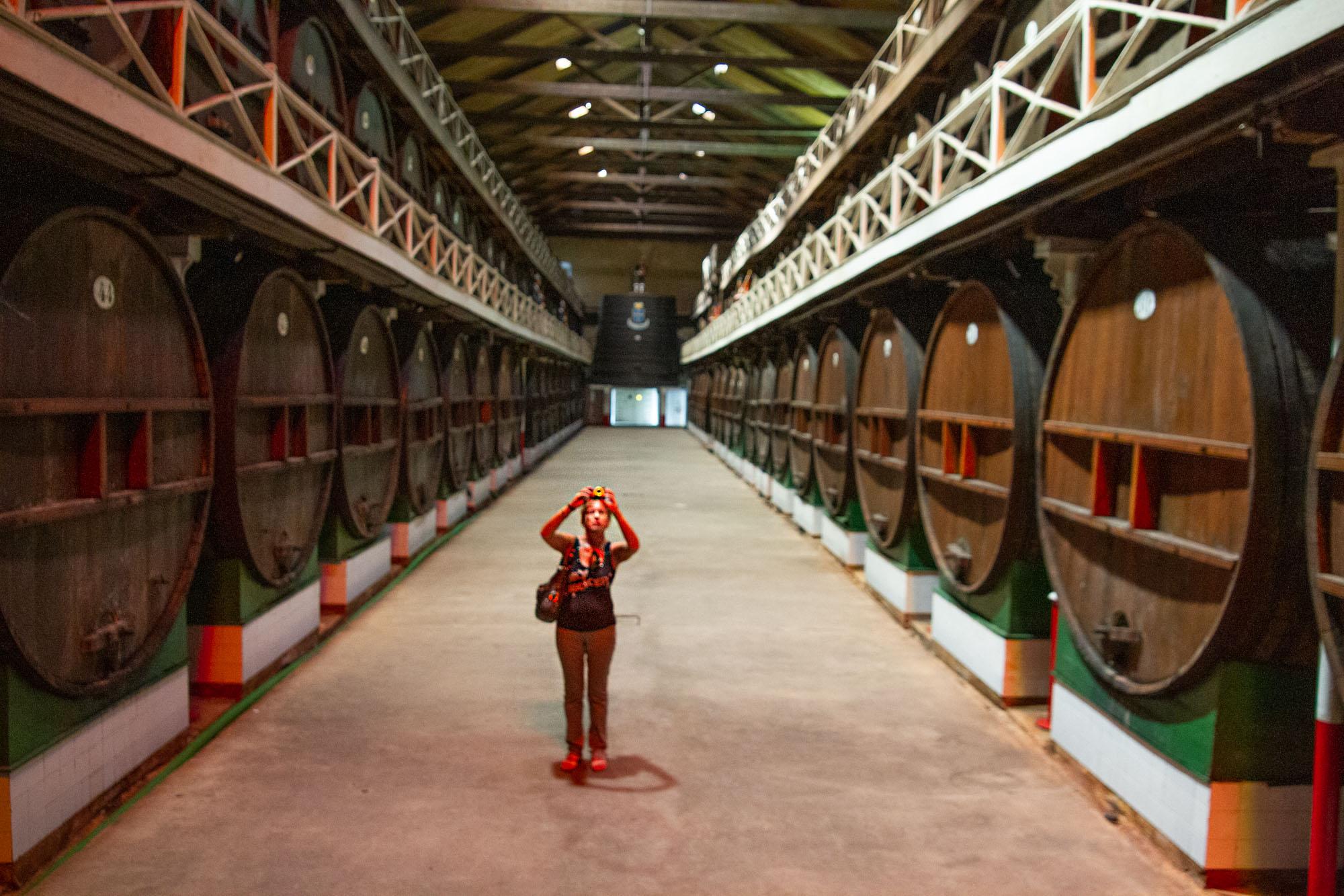 Cider Tourist in Asturias