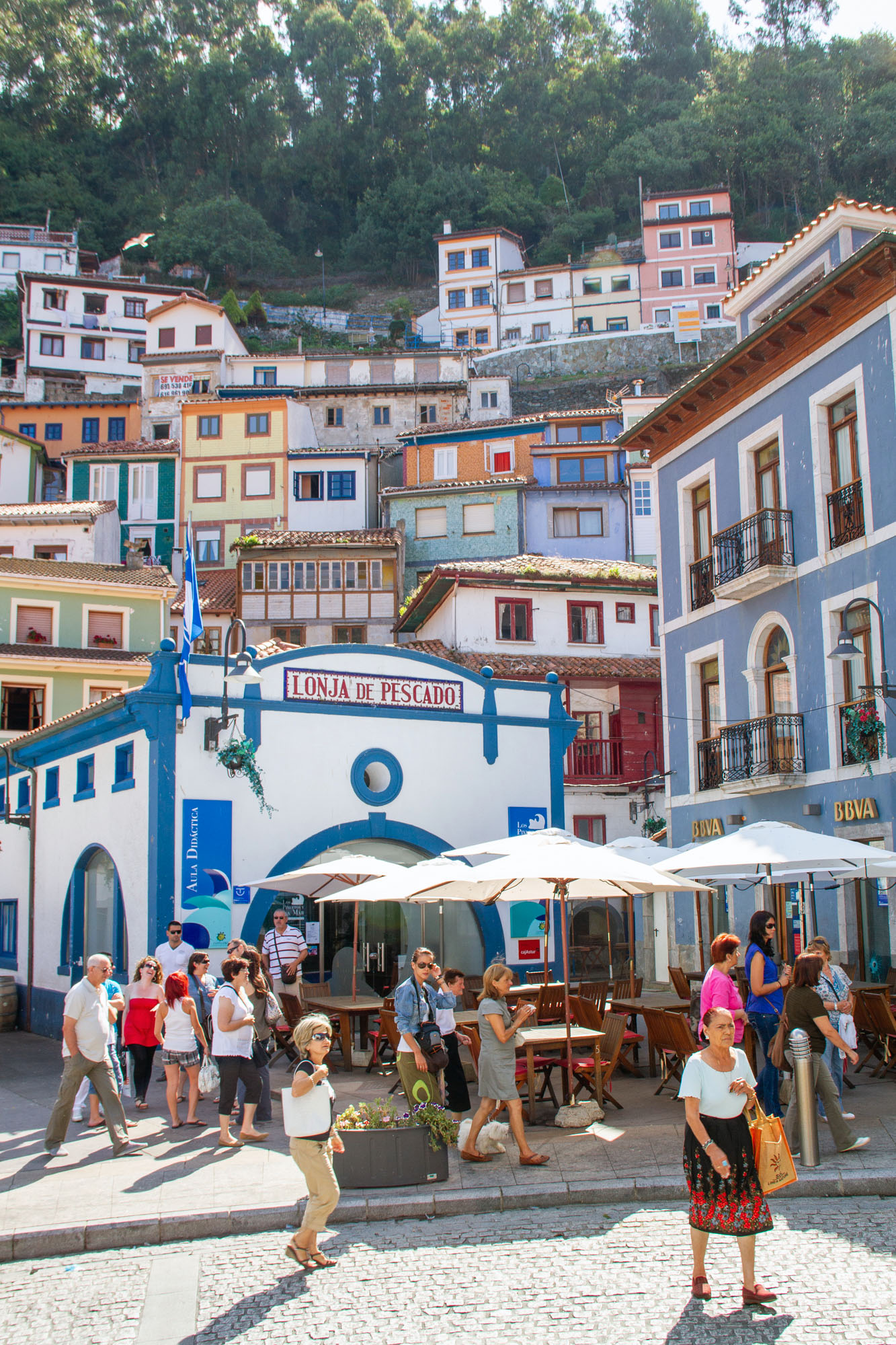 Photo Lonja de Pescado Cudillero Asturias