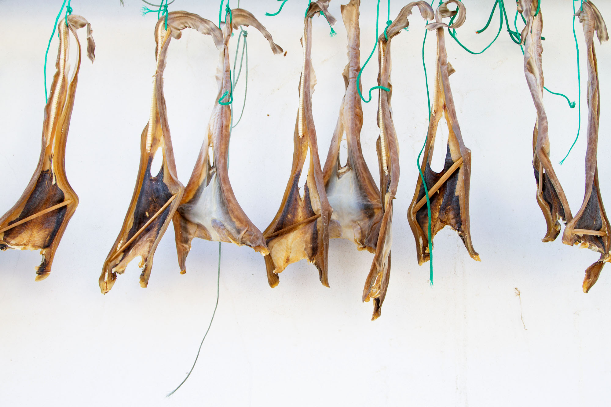 Dried Fish Cudillero Asturias Spain